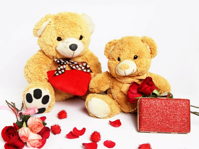Rakhi gifts-soft toys
